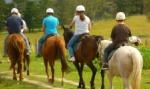 horsehiking
